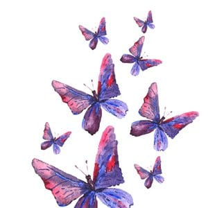Please Don't Crush the Butterflies